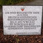 Buchenwald - web